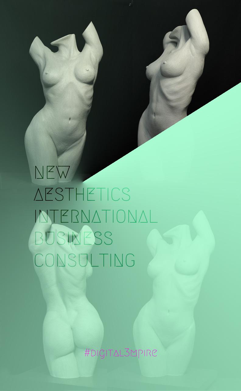 2new_aesthetics_business